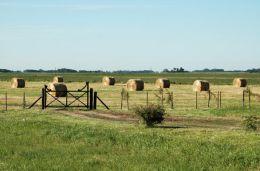 Dirigentes rurales reclamaron a Bonfatti dejar sin efecto el aumento del Inmobiliario Rural