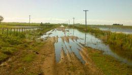 Gobierno de Santa Fe prorrog� la presentaci�n de declaraciones juradas por emergencia agropecuaria