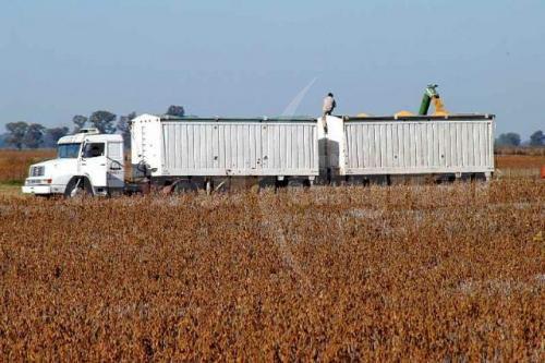 Suben 26% tarifas de transporte de cereal
